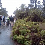 A Day at Hawaii Volcanoes National Park